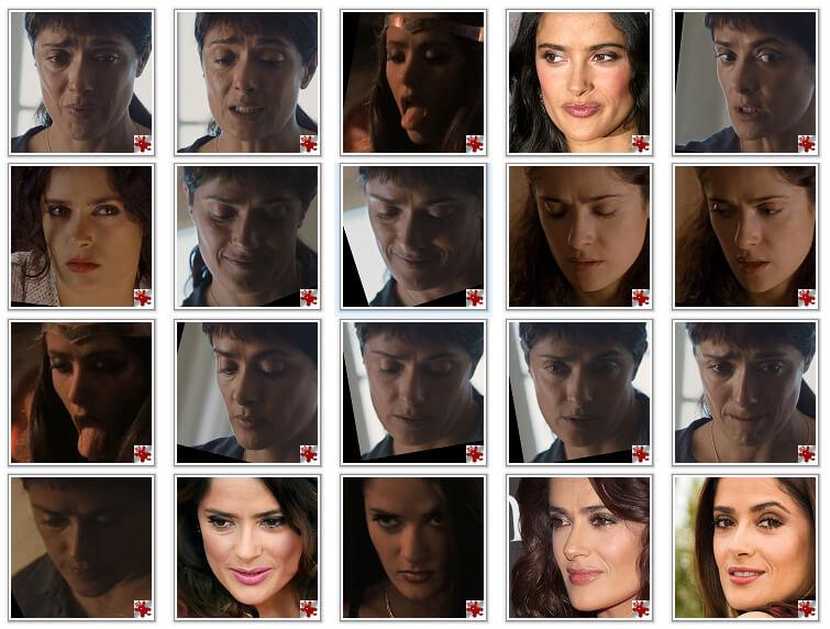Facial dataset of Salma Hayek