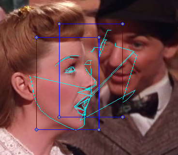 FAN align confuses faces
